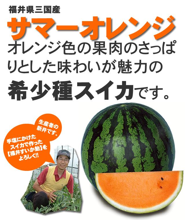 福井すいか飴に使用されているスイカはオレンジ色の果肉の希少スイカです